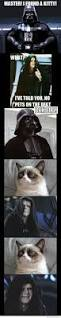 the sith lords get a cat the adventures of accordion guy in the