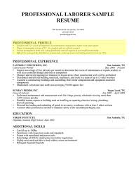 professional summary exle for resume how to write a professional profile resume genius resume