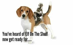 Elf On The Shelf Meme - funny collection of you ve heard of elf on the shelf meme