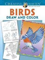amazon creative haven birds draw color coloring