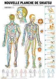 si e de shiatsu shiatsu maps masunaga shiatsu and mtc acupuncture