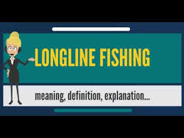 What Does Night Blindness Mean What Is Longline Fishing What Does Longline Fishing Mean