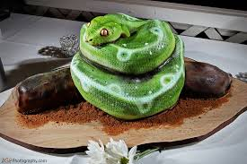 the world u0027s best photos of cake and reptile flickr hive mind