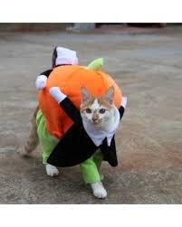 Carrying Halloween Costume Slash Prices Smarit Pet Dog Cat Carrying Pumpkin Halloween