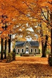 1605 best autunno images on