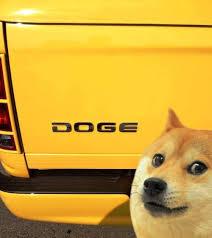 Make Doge Meme - doge the best of the doge meme costume pinterest doge meme