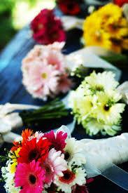 orange gerbera daisys with garden rose mix flowerchildsandiego