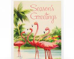 tropical christmas cards flamingo christmas cards tropical christmas 10 per greeted