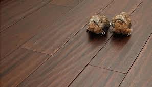 laminate flooring vs wood flooring hardwood laminate flooring prices home depot pelikan