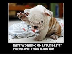 Working Saturday Meme - hate working on saturdays then raise your hand up meme on me me