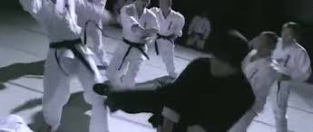 imagenes gif karate martial arts karate gif find share on giphy