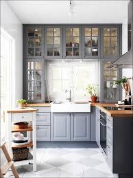 ikea shallow kitchen cabinets ikea kitchen cabinet quality coryc me