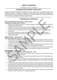 professional resume com resume writing services online resume services resumeyard