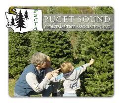 Washington Christmas Tree Farms - puget sound christmas tree association pscta washington and