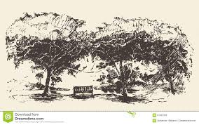 romantic tree with bench drawn sketch stock vector image 61052363