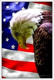 Eagles Flag Sad Eagle U0026 Flag