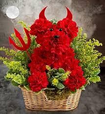 dog flower arrangement flowers and gifts davenport fl florida florist flower