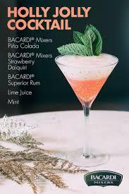 11 best winter holidays images on pinterest bacardi winter