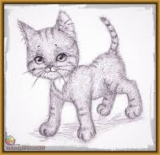 imagenes a lapiz de gatos dibujos de gatos a lapiz faciles archivos dibujos de gatos
