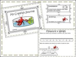 crayfish experiments crayfish journal scientific method qr