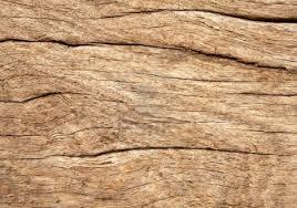 rustic wood grain home design