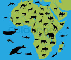 the map of africa animals on the map of africa stock vector colourbox