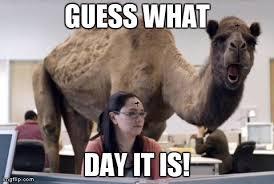 Wednesday Meme - funny wednesday memes memeologist com