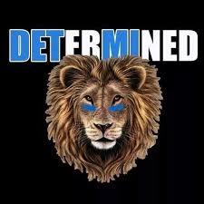 198 best detroit lions images on detroit lions