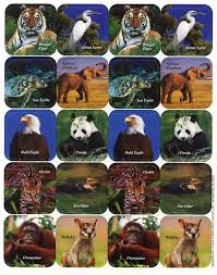 endangered animals theme stickers eureka