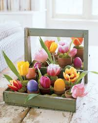 free delivery flowers uncategorized potted easter flowers wholesale online