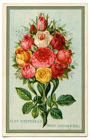 bouquet of roses royalty free image bouquet of roses the graphics fairy