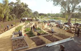 English Garden Layout by Campbelltown City Council Lochiel Park Community Garden