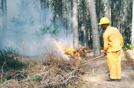 Wildfire Training by Wildland Fire Training Center Africa