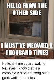 Hello Is It Me You Re Looking For Meme - 25 best memes about hello is it me youre looking for hello