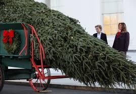 barron and melania marvel at the white house tree