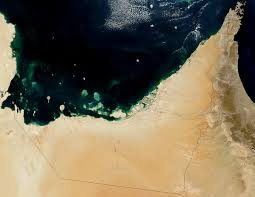 environmental issues in the united arab emirates wikipedia