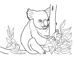 elf on the shelf coloring pages for kids free printable koala coloring pages for kids
