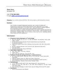 Web Developer Resume 21 Fascinating Oracle Pl Sql Developer Resume Sample Resume Go