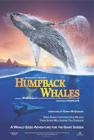 humpback whales buy rent and watch movies u0026 tv on flixster