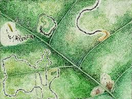 Rock Tunnel Leaf Green Map Steps To Brain Death U2013 Dc
