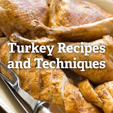 thanksgiving turkey recipes and techniques serious eats