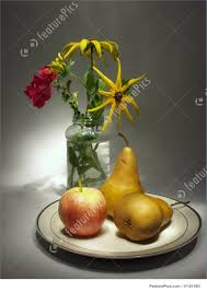 flowers fruit still with flowers and fruits image