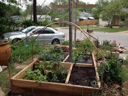 brilliant vegetable gardening in texas keyhole garden nifty