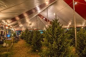 hart t tree farms christmas tree lot davie florida location