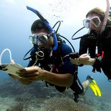 padi advanced open water diver course scuba diving in miami fl