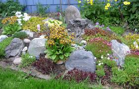 tips to build a beautiful rock garden at home artenzo