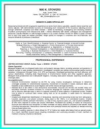 Resume Summary No Experience Insurance Agent Resume Sample Professional Examples Claims