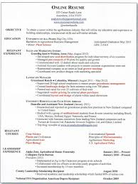 Make A Online Resume by Make An Online Resume Resume For Your Job Application