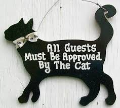 Funny Home Decor Signs Best 10 Cat Signs Ideas On Pinterest Cat Quotes Cat Decor And