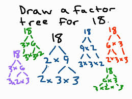 factor trees youtube